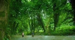 sakarya-taitim-serkandinc-com-tr-18